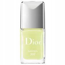 Dior Vernis Nail 302