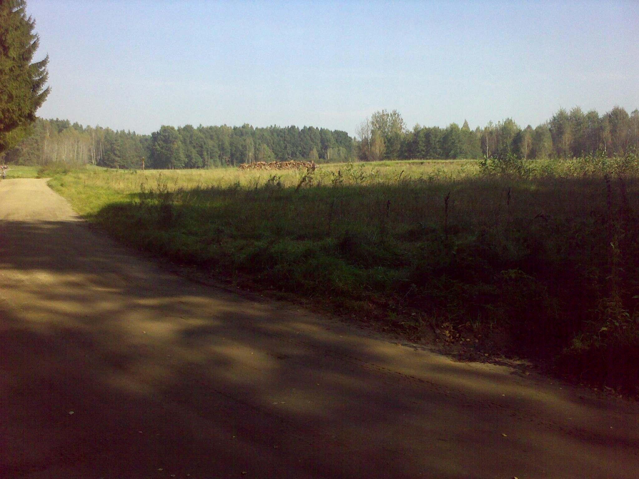 Działka rolna + las z warunkami zabudowy