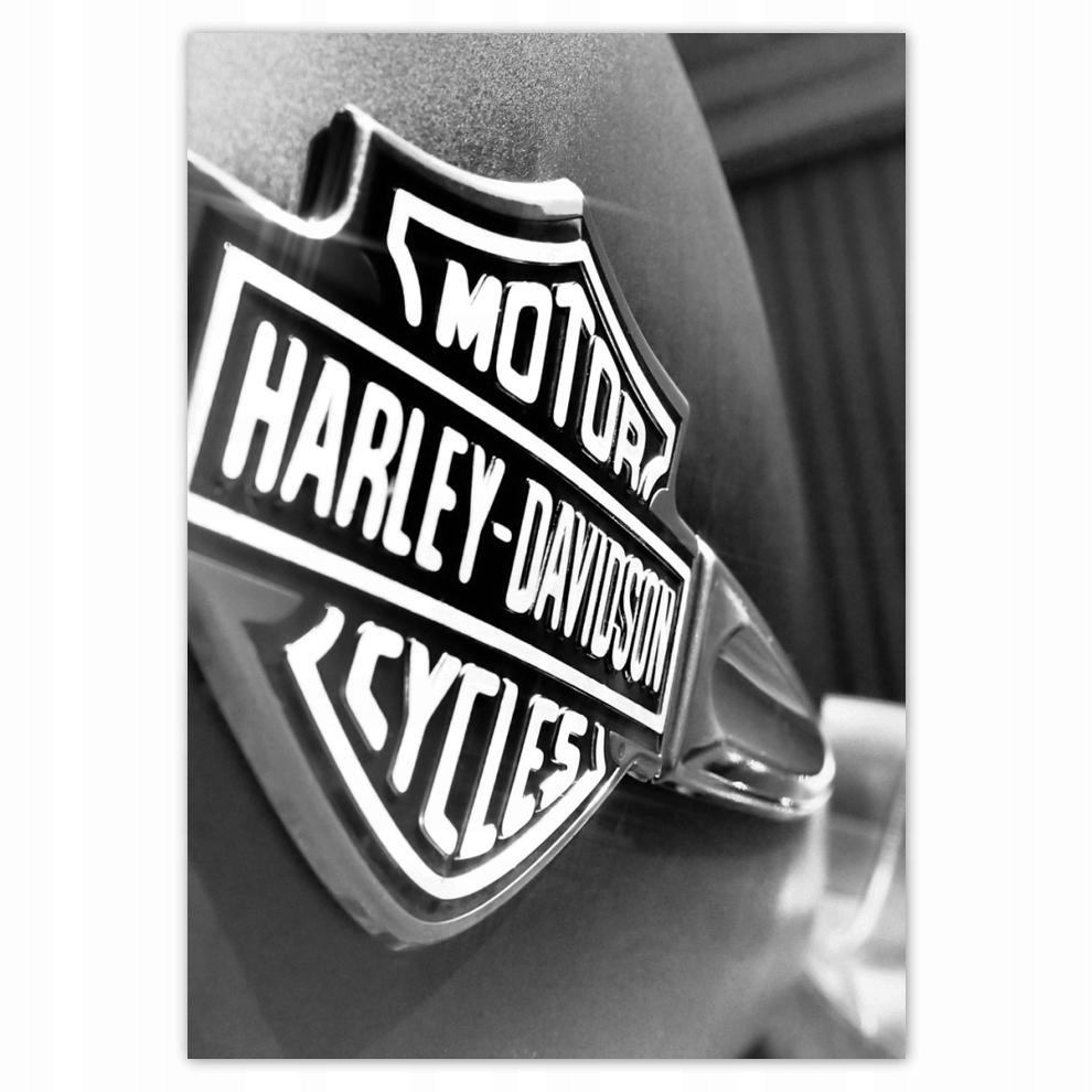 Logo Harley Davidson Plakaty 70x100 Na Wymiar 7697131025