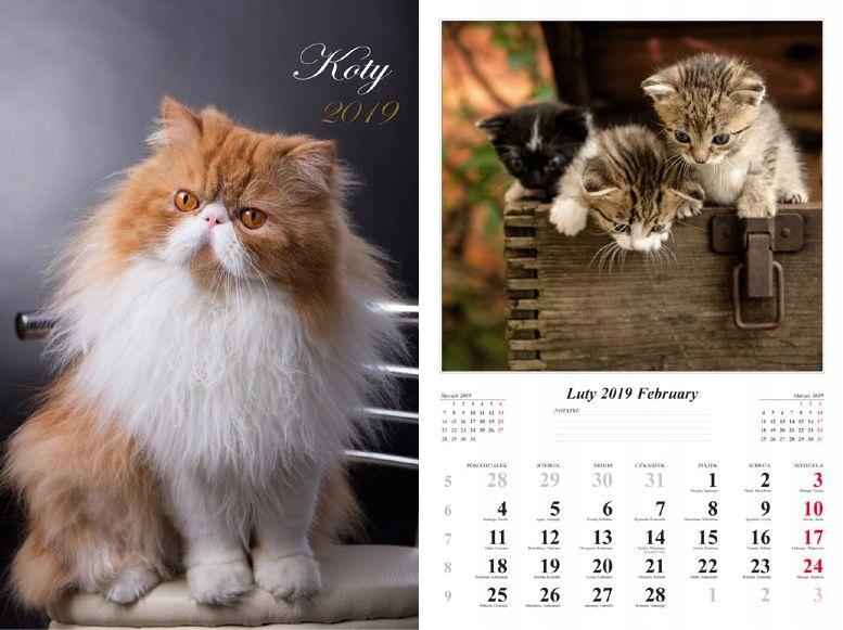 Kalendarz ścienny 13-Planszowy Koty 2019
