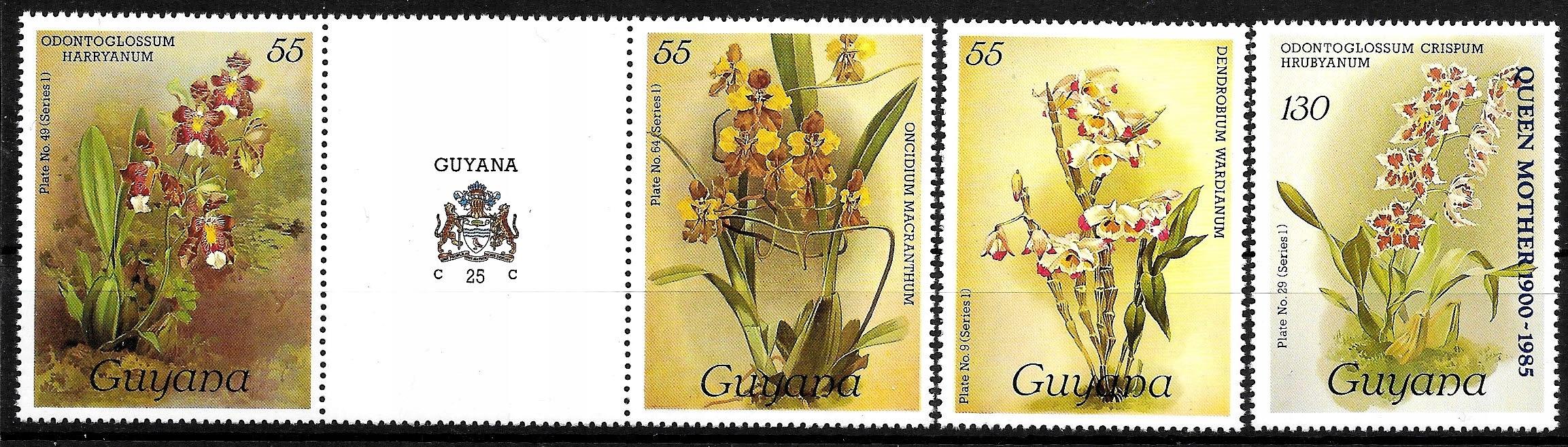 FL719 FLORA kwiaty storczyki zn.** Gujana