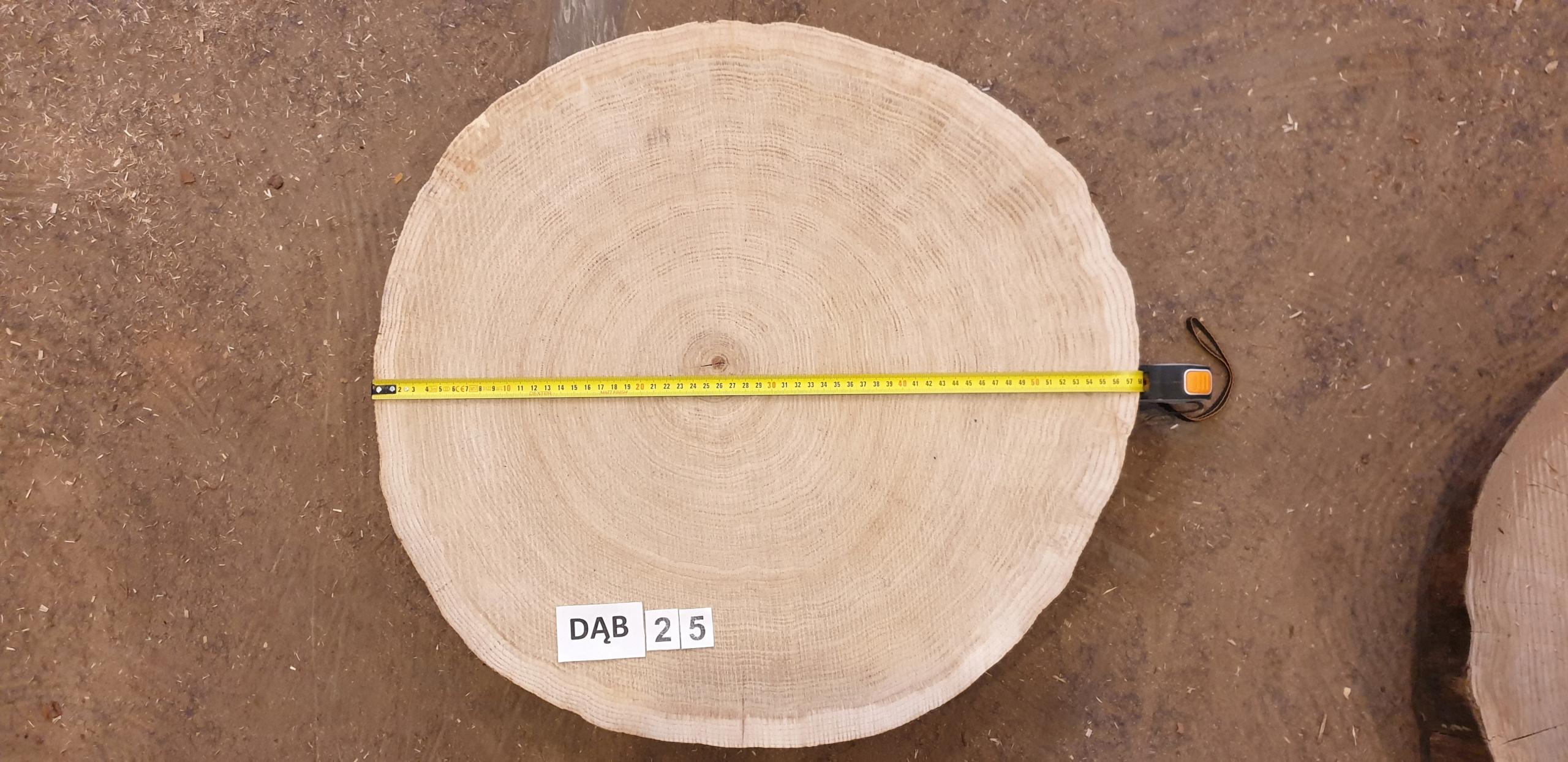 Plaster dębu sezonowany ok 58 cm średnicy