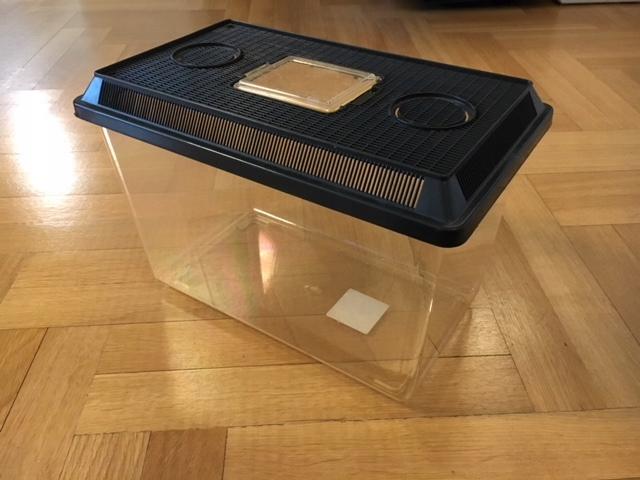 Terrarium plastikowe, 31x23x25.