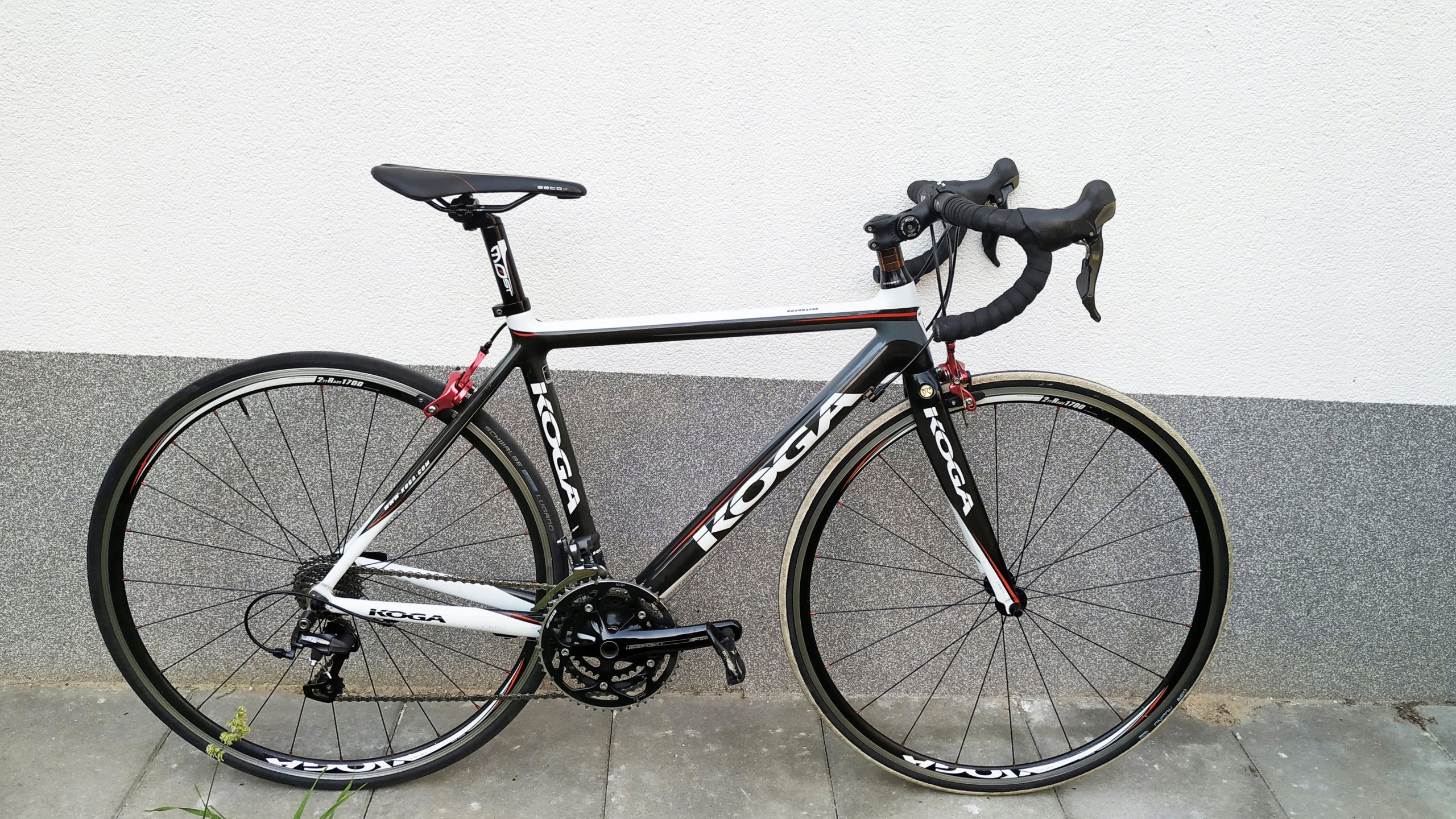 Koga Road Racer Carbon Ultegra Trek Scott Giant