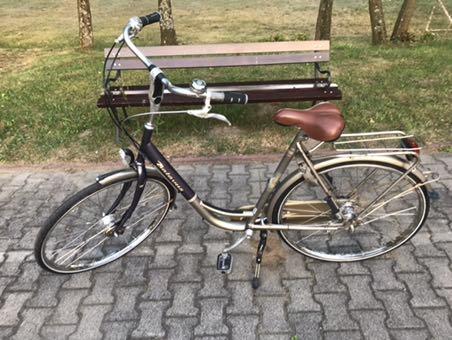 Rower damski damka Batavus Verona (28) Serwis