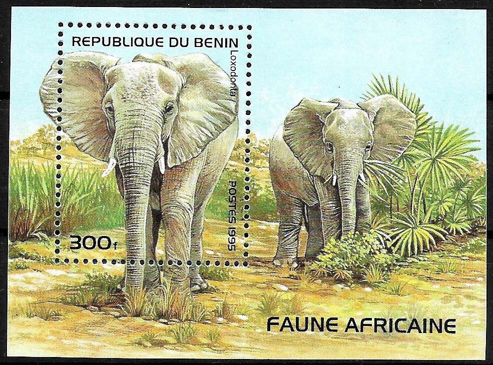 FAA010 1995 FAUNA ssaki, słonie blok** Benin