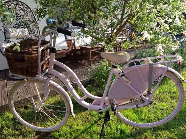 Holenderski rower miejski damski SPARTA Lola-Jo !!