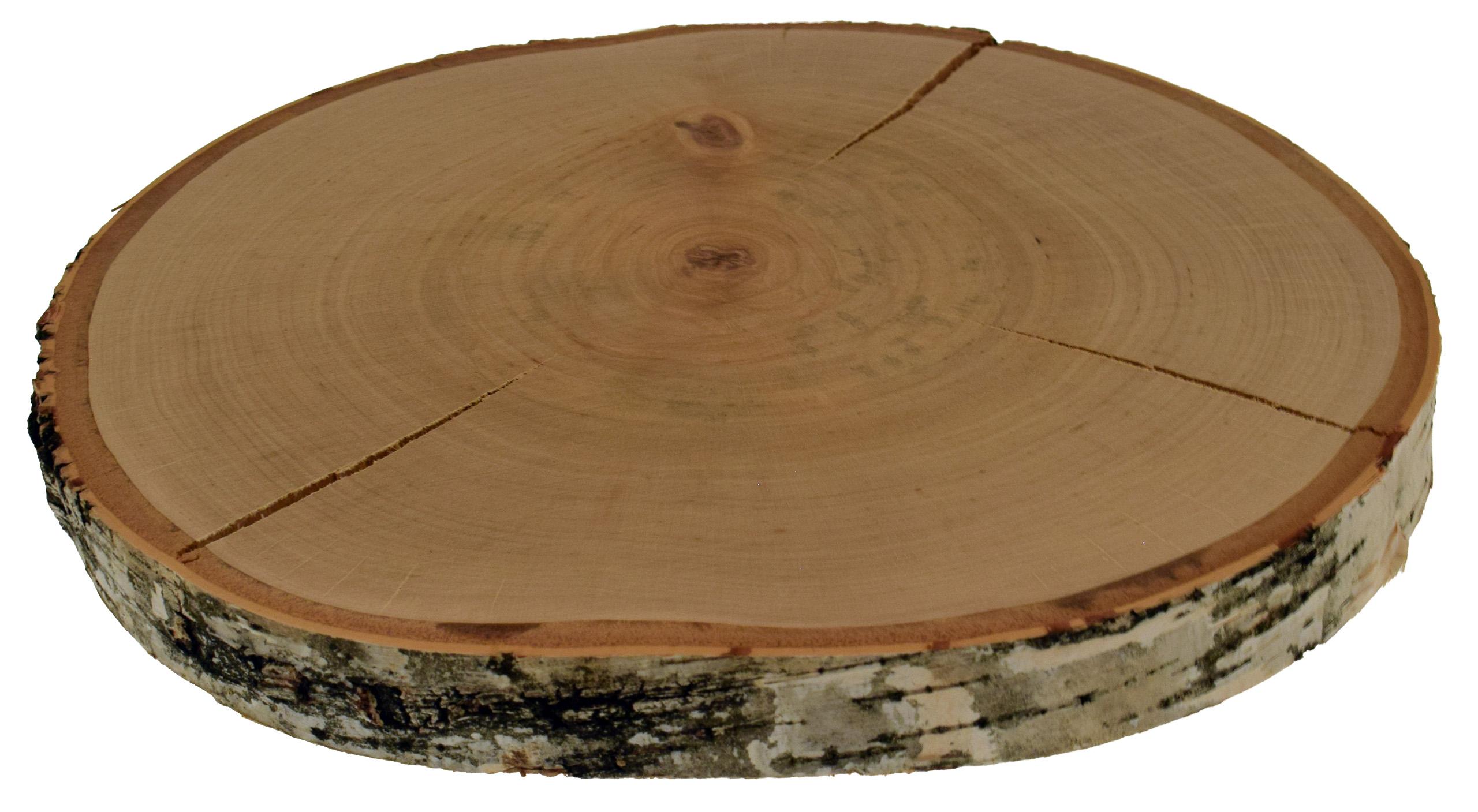 Plaster drewna, talarek drewna 30-34 cm BRZOZA