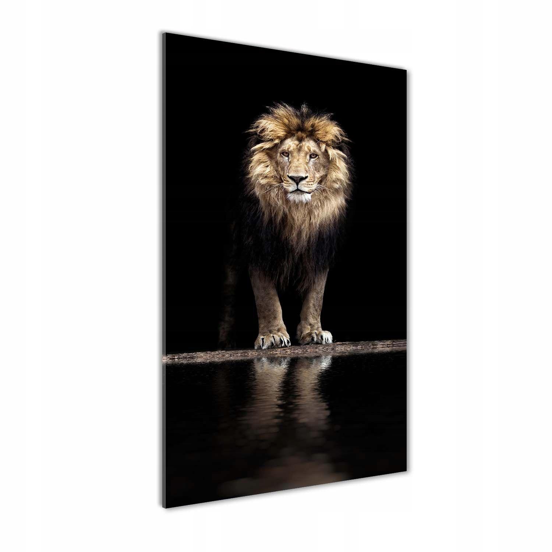 Foto obraz szkło hartowane Portret lwa 70x140 cm