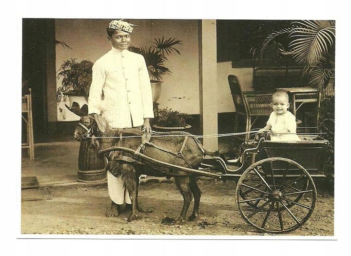 Poczt. - Dziecko w 'kozim wózku' / Indonezja, 1925
