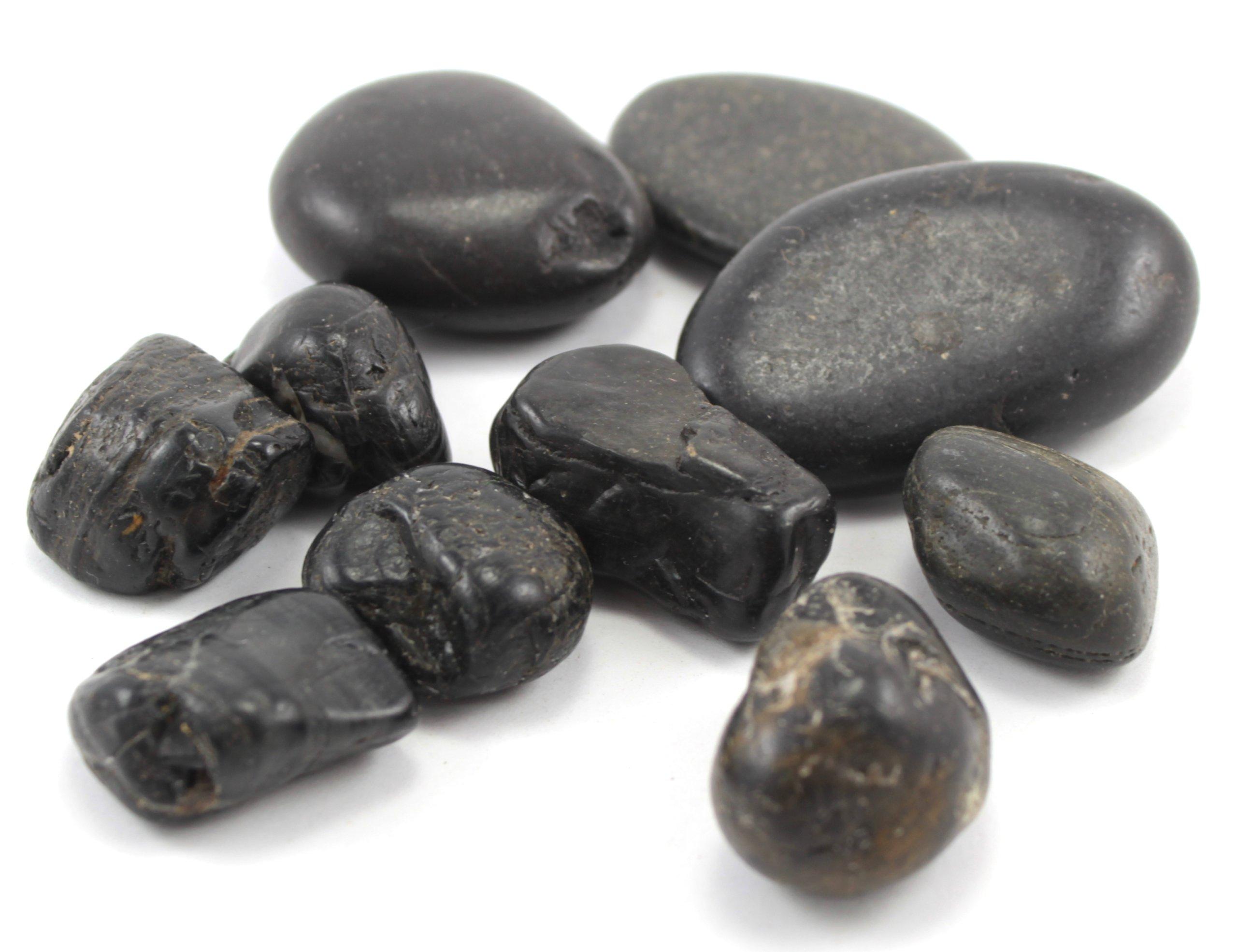 Kamienie czarne otoczaki 2-4cm 10szt #REPTILiTY