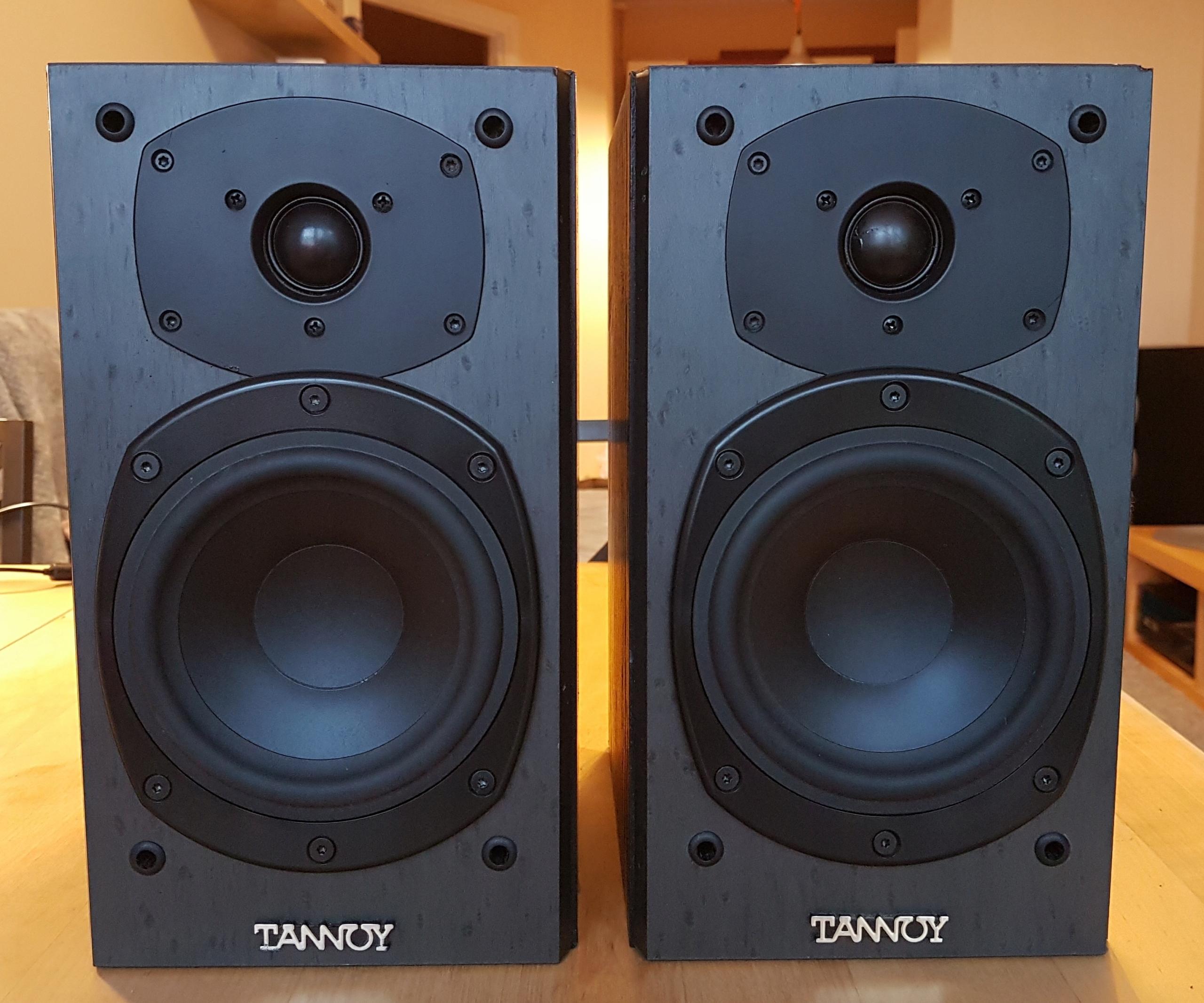 Tannoy Mercury M1 B_Eye świetne kolumny głośnikowe