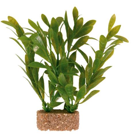 Trixie Roślina dekoracyjna w piasku 12 cm # 1