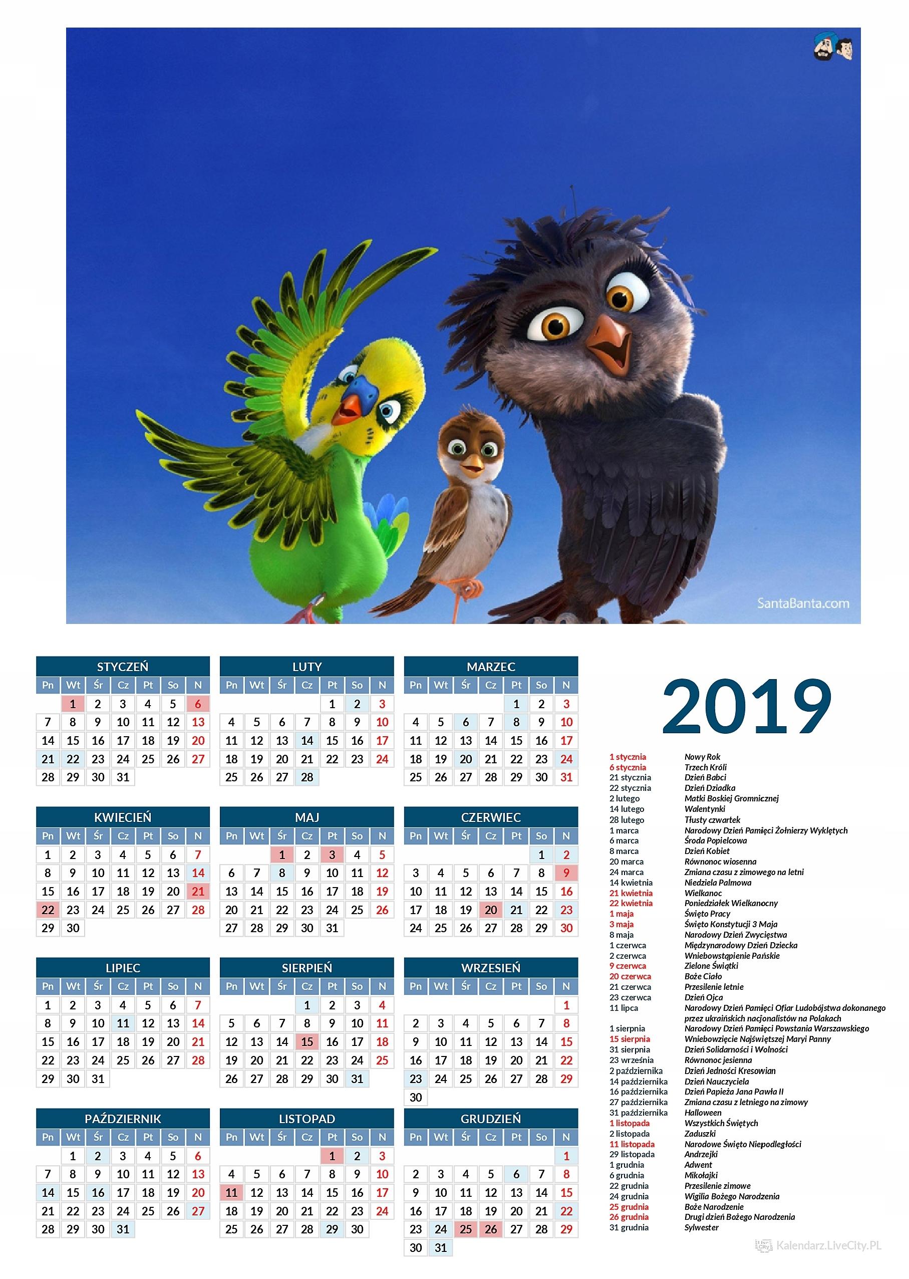 Kalendarz 2019 film Riko prawie bocian