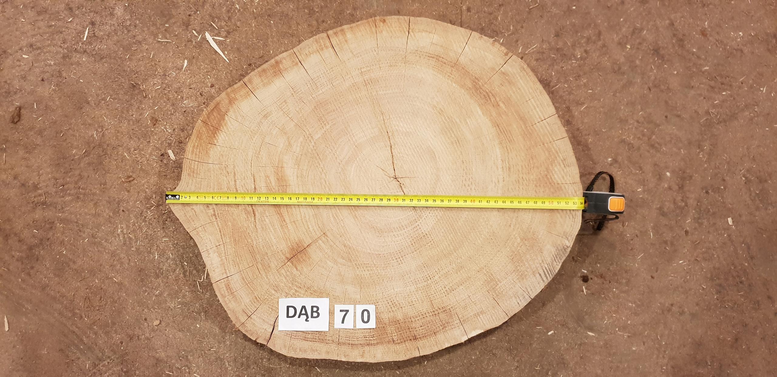 Plaster dębu sezonowany ok 54 cm średnicy