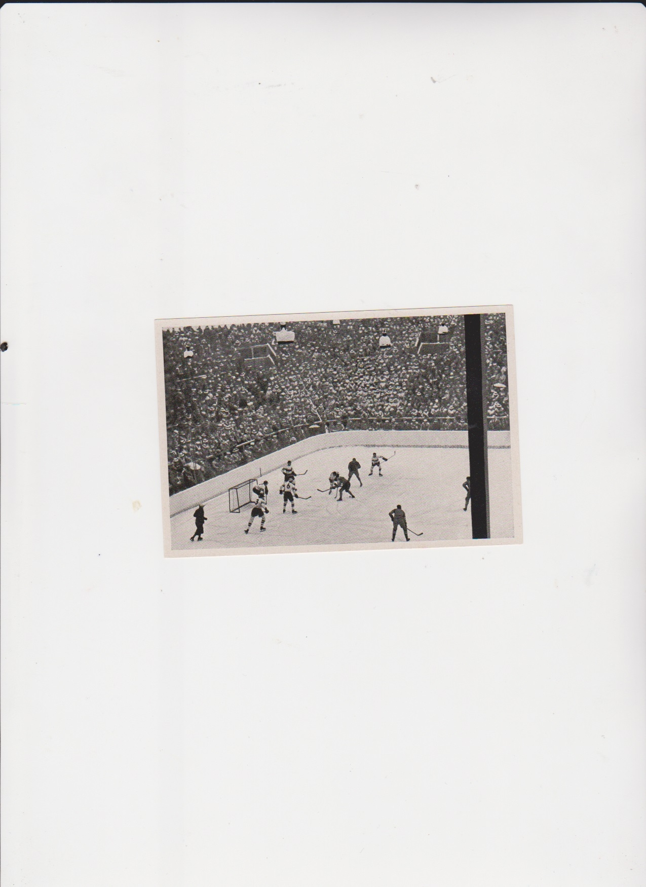 zdjęcia 1936 rok, igrzyska olimpijskie