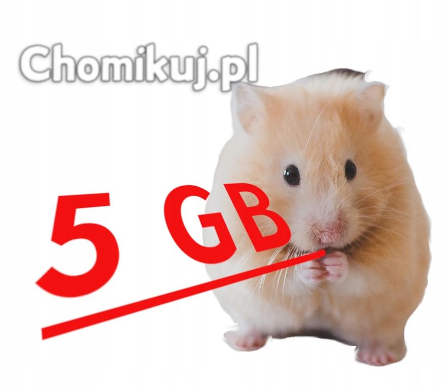 CHOMIKUJ transfer 5GB BEZTERMINOWO
