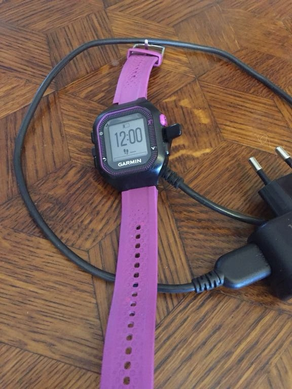 Garmin zegarek sportowy