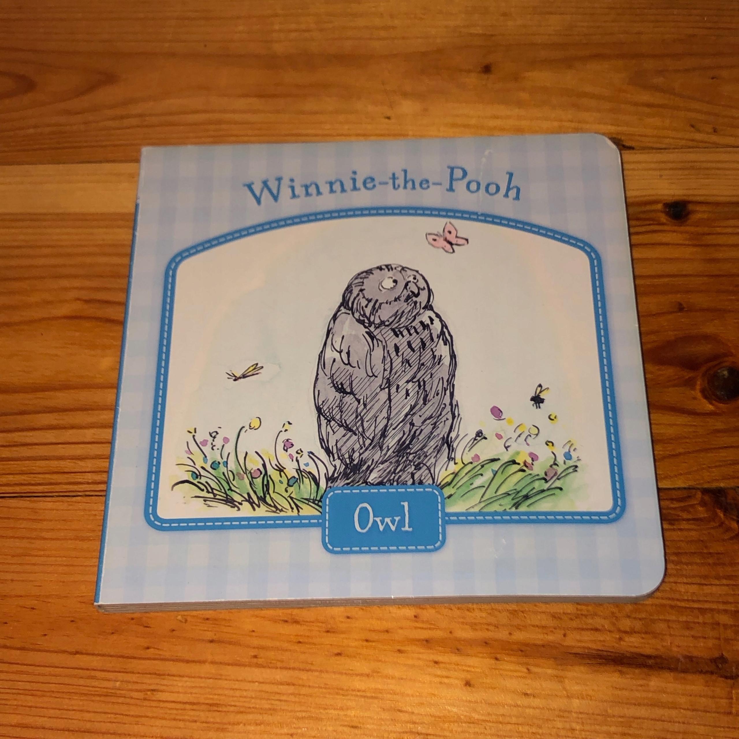 Książka angielska WINNIE THE POOH OWL
