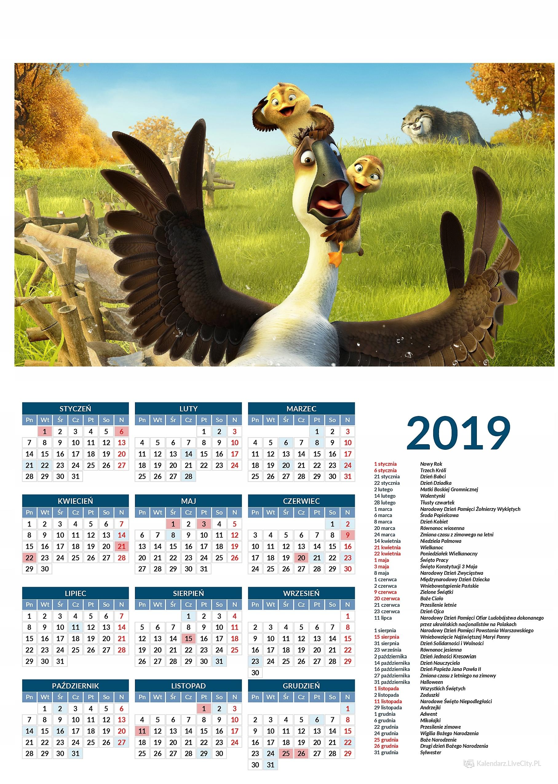 Kalendarz 2019 film kaczki z gęsiej paczki