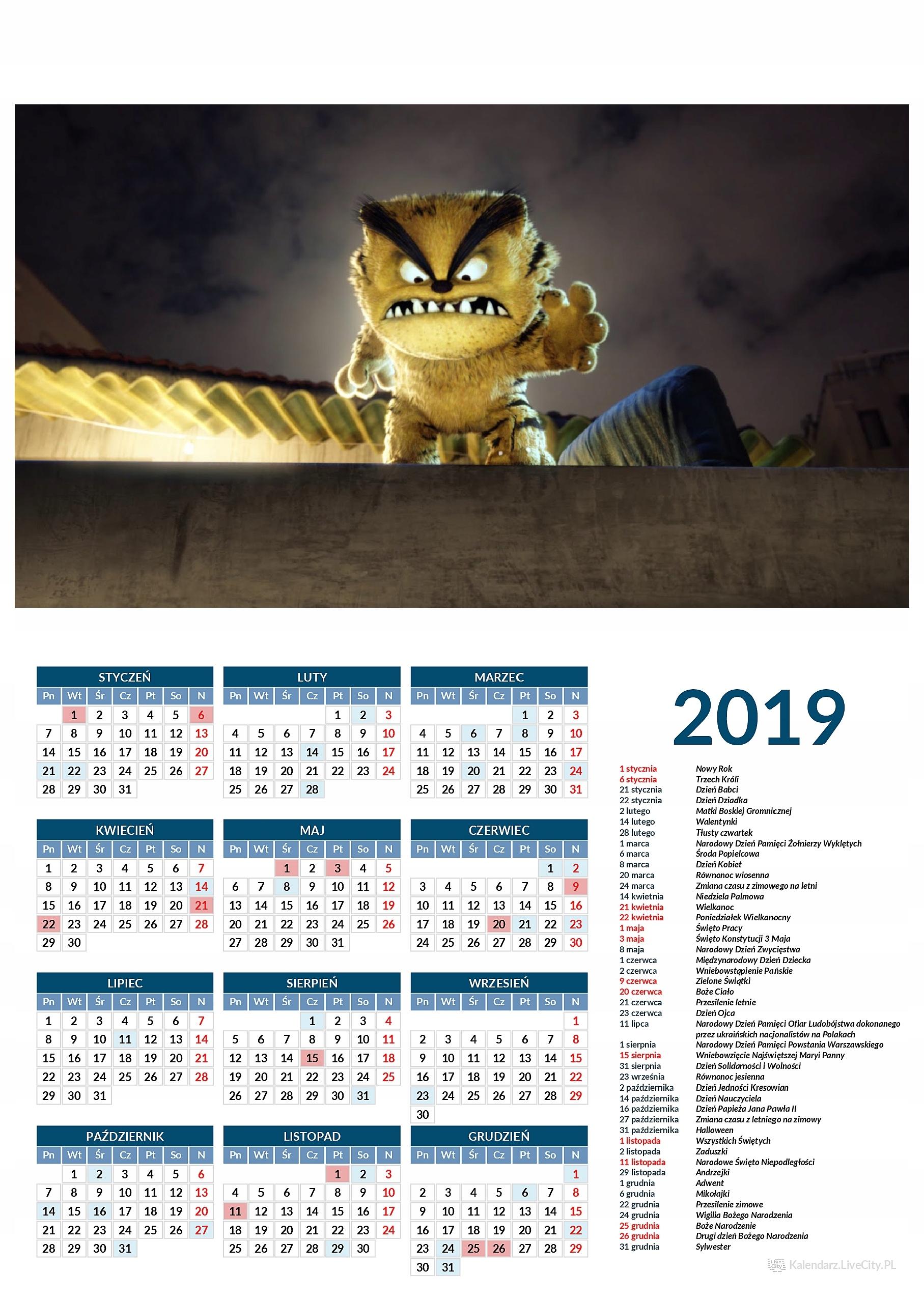 Kalendarz 2019 film kocur