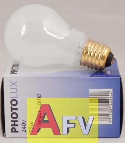 Žiarovka Bulb Paterson 75W / 230V