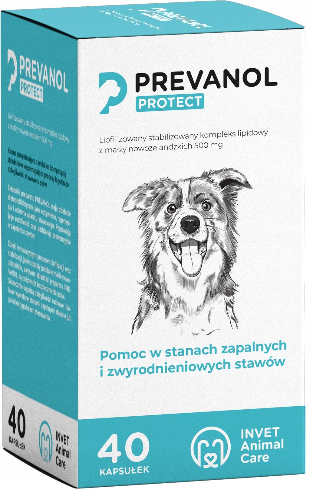 Prevanol 40, karma uzupełniająca na stawy dla psa