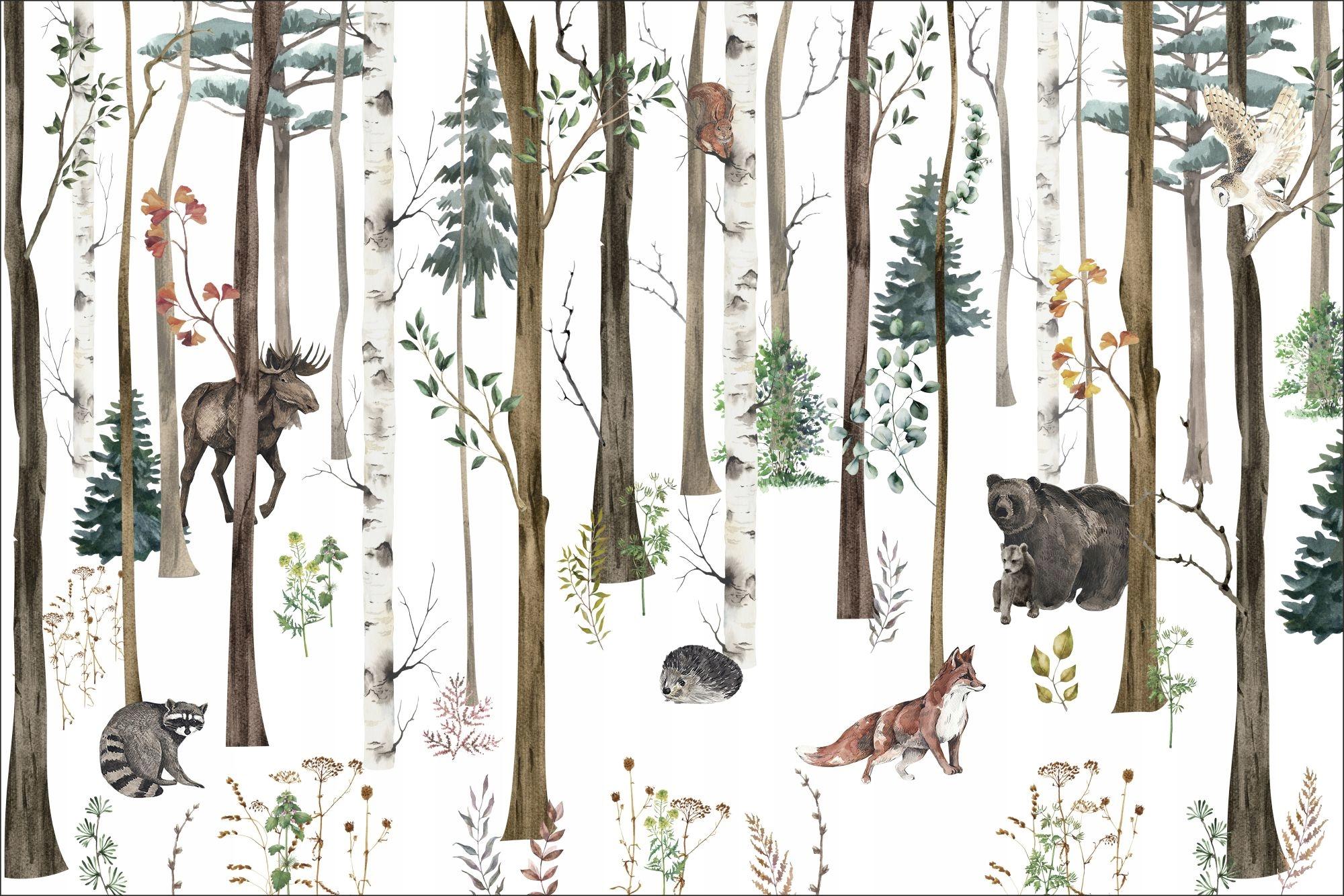 Fototapeta na wymiar las, zając, leśne zwierzęta