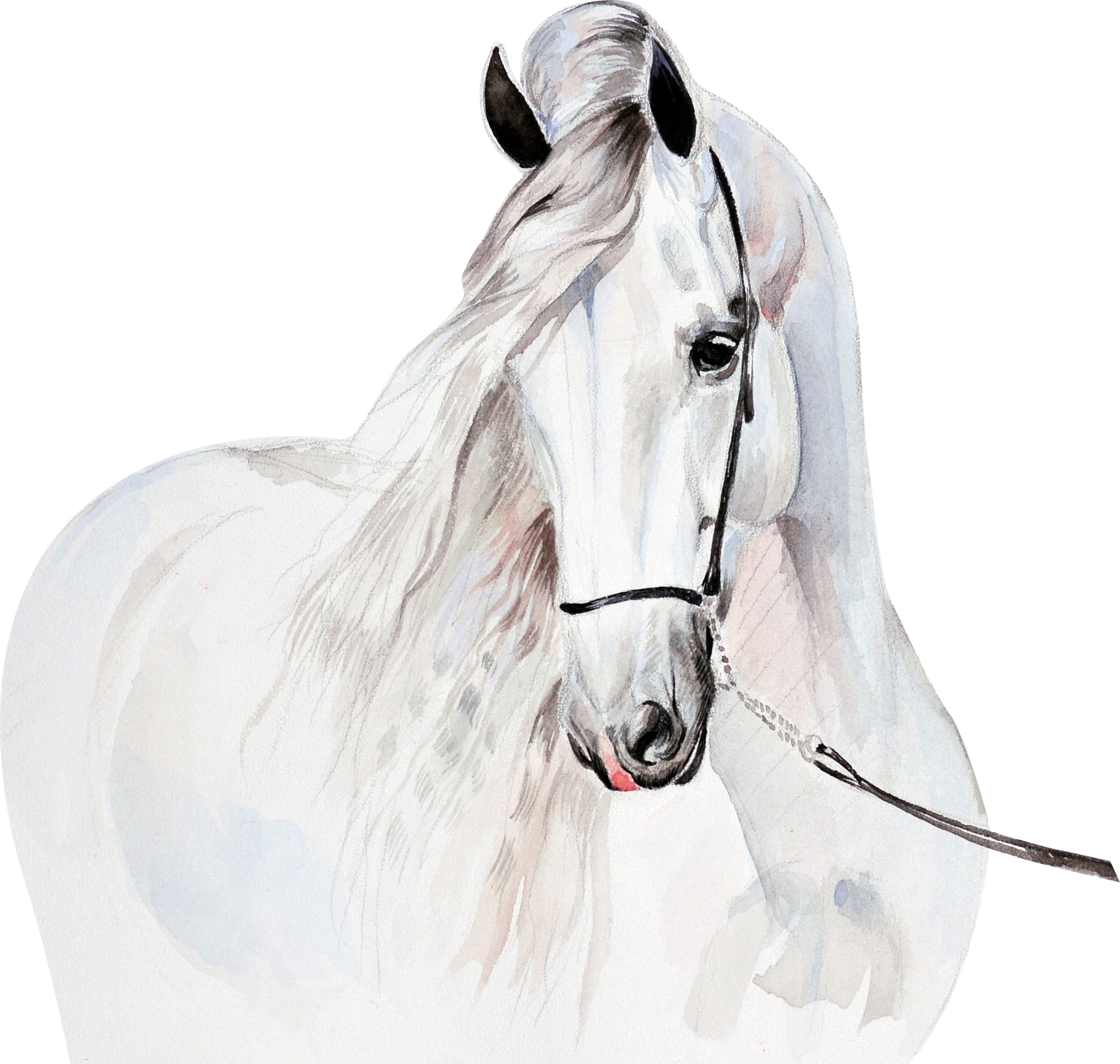 Наклейки на стену детские White Horse D312 125см