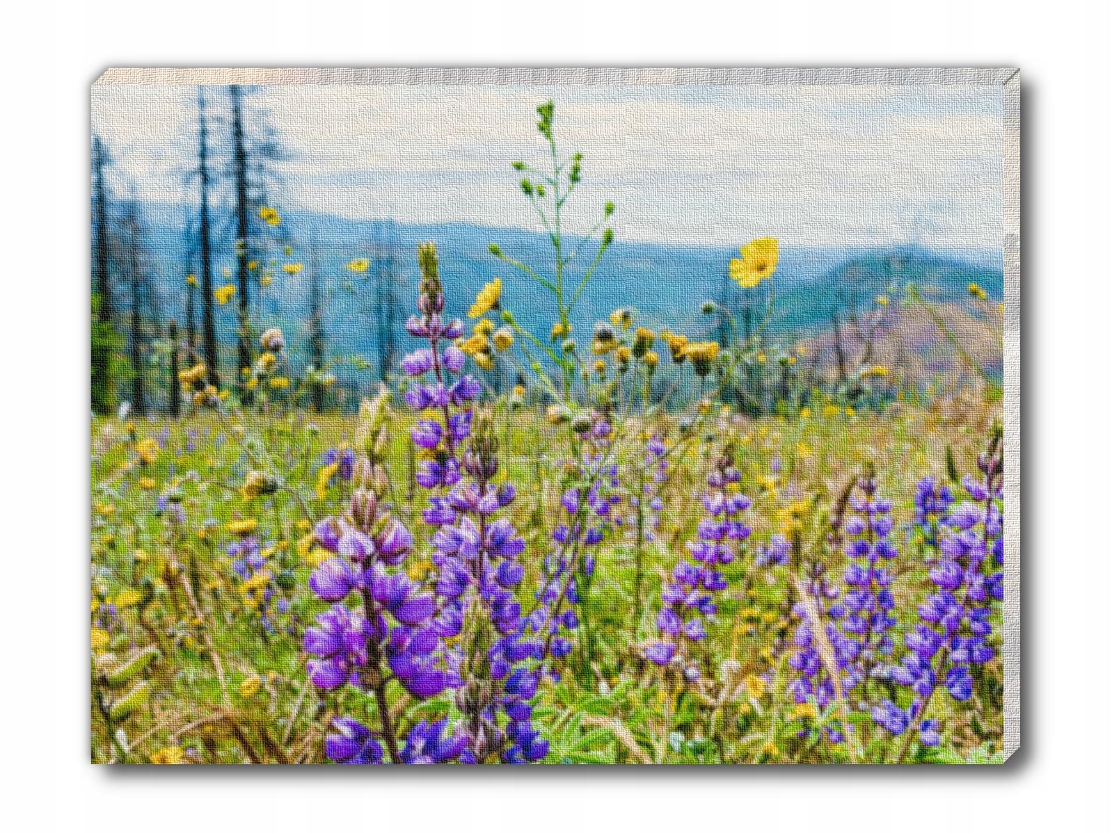 Mały lawendowy obraz na płótnie lawenda łąka kwiat