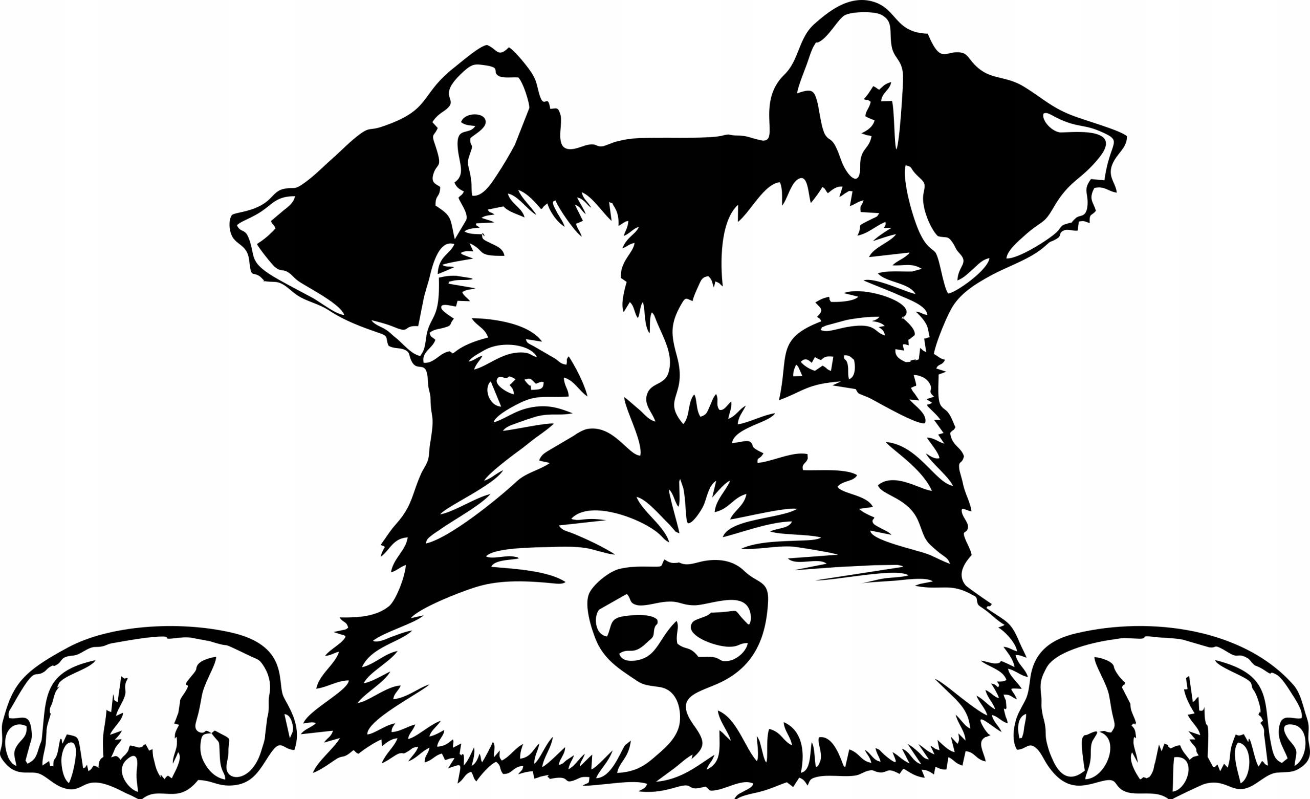 naklejka samochód kask laptop pies Sznaucer