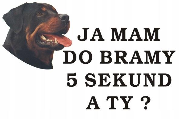 Tabliczka Pies Ja Mam Do Bramy 5s.A TY40x30cm #101