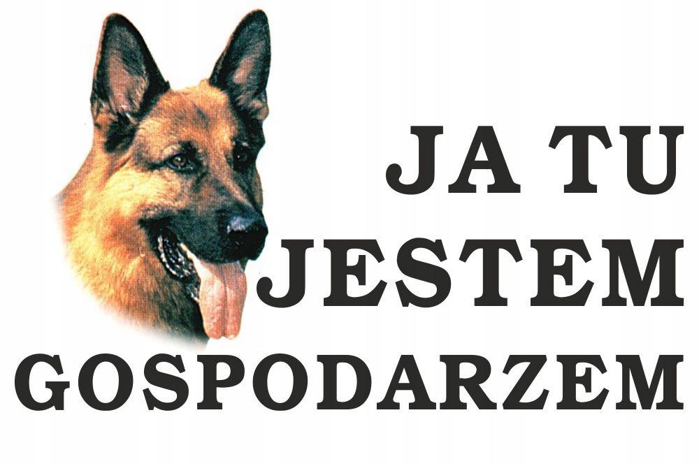 Tabliczka Pies Ja tu jestem gospodarzem 30x20cm #1
