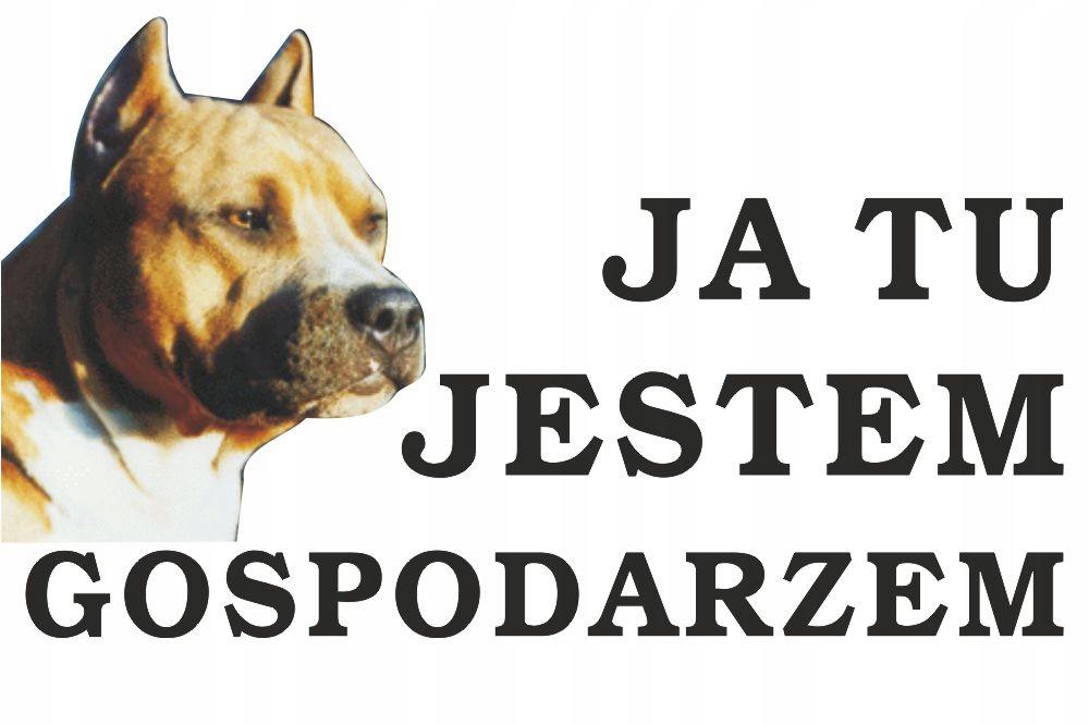 Tabliczka Pies Ja tu jestem gospodarzem 20x12cm #2