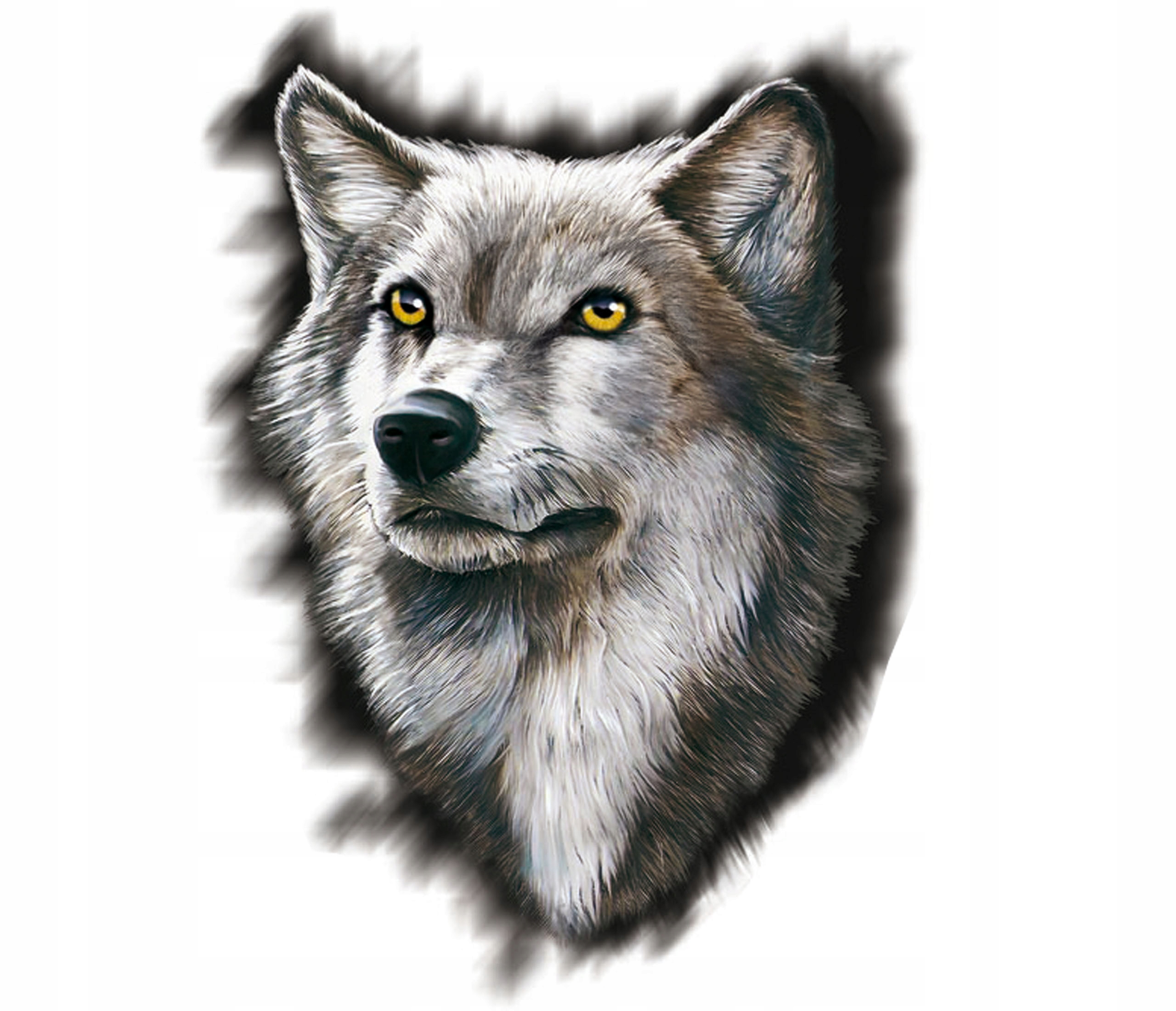 Волк картинка голова