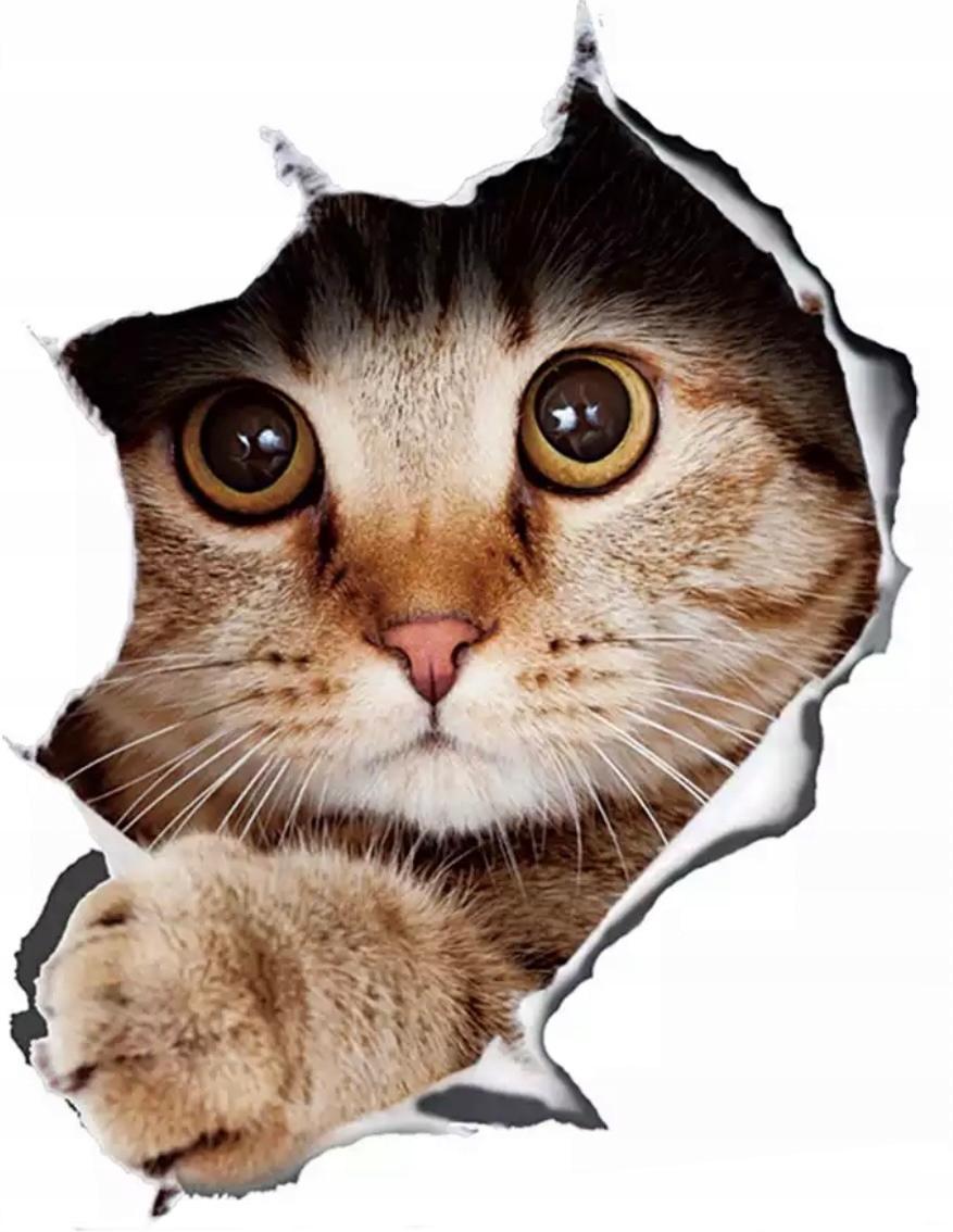 Наклейка на стену 3D кошка с отверстием для машины