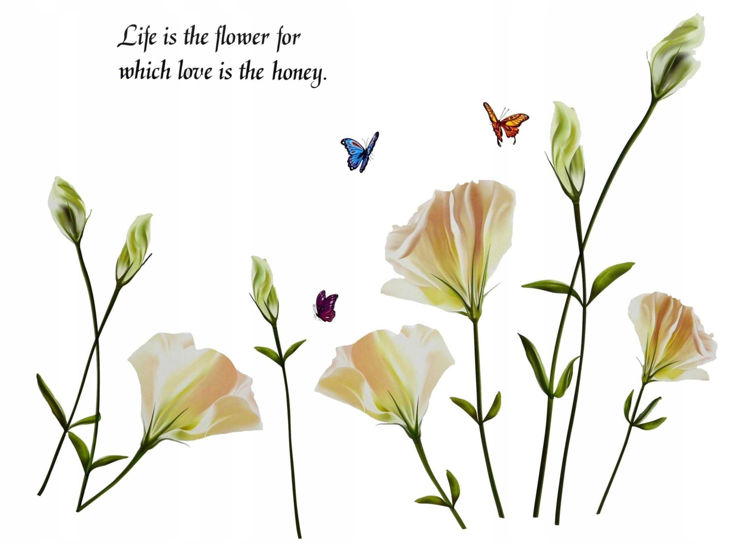 Наклейки на стену Белые цветы Бабочки