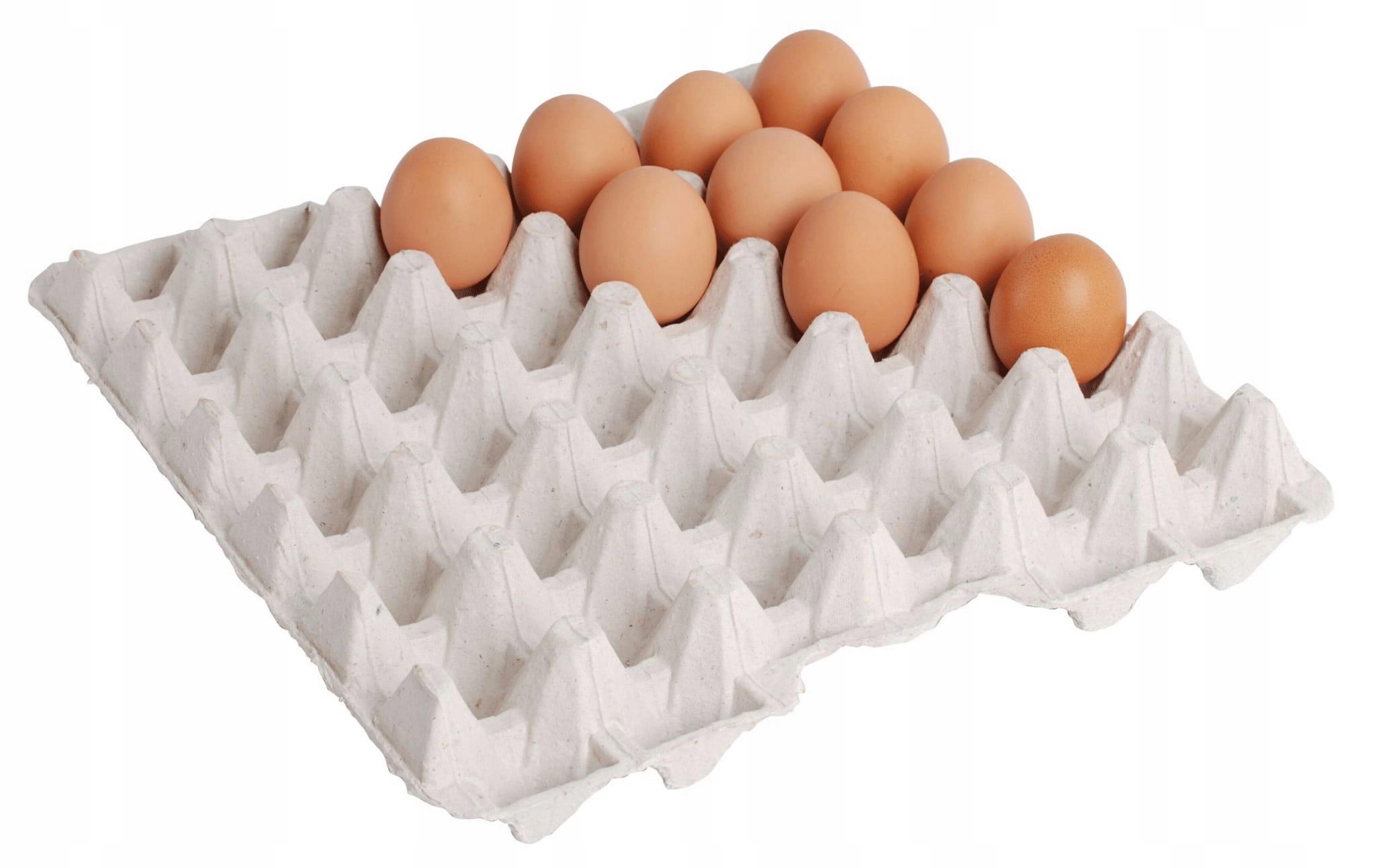 podczas montażu jaja podczas montażu, ile penis wzrasta