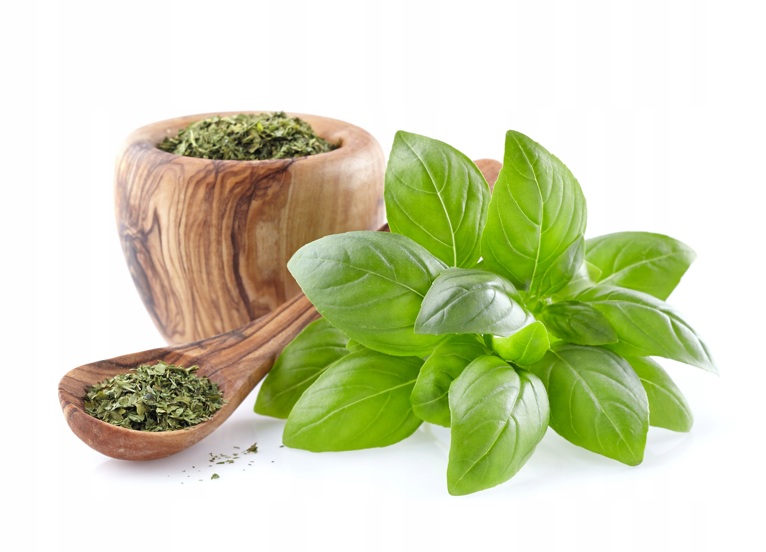 MORINGA LIŚĆ Olejodajna Najzdrowsza herbata 500g Marka Moringa Tea