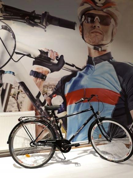 28-stupňový 3-rýchlostný pánsky bicykel Nexus Classic Retro