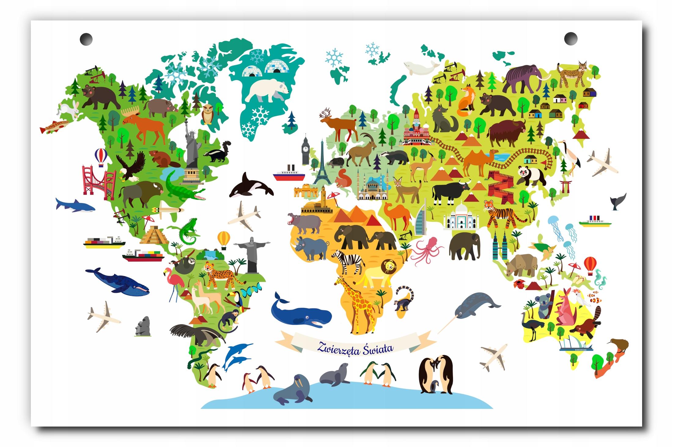 Duża kolorowa tablica mapa świata zwierzęta A3