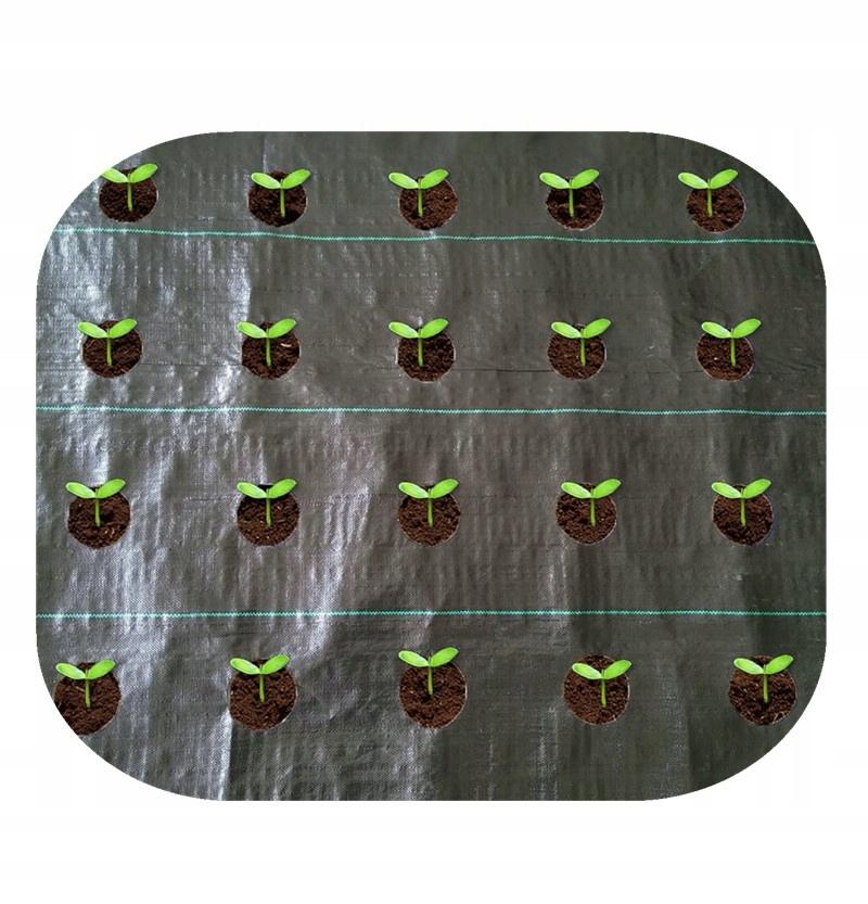 Агротекстиль с ОТВЕРСТИЯМИ для ЧЕСНОКА 1.10x10 Овощи