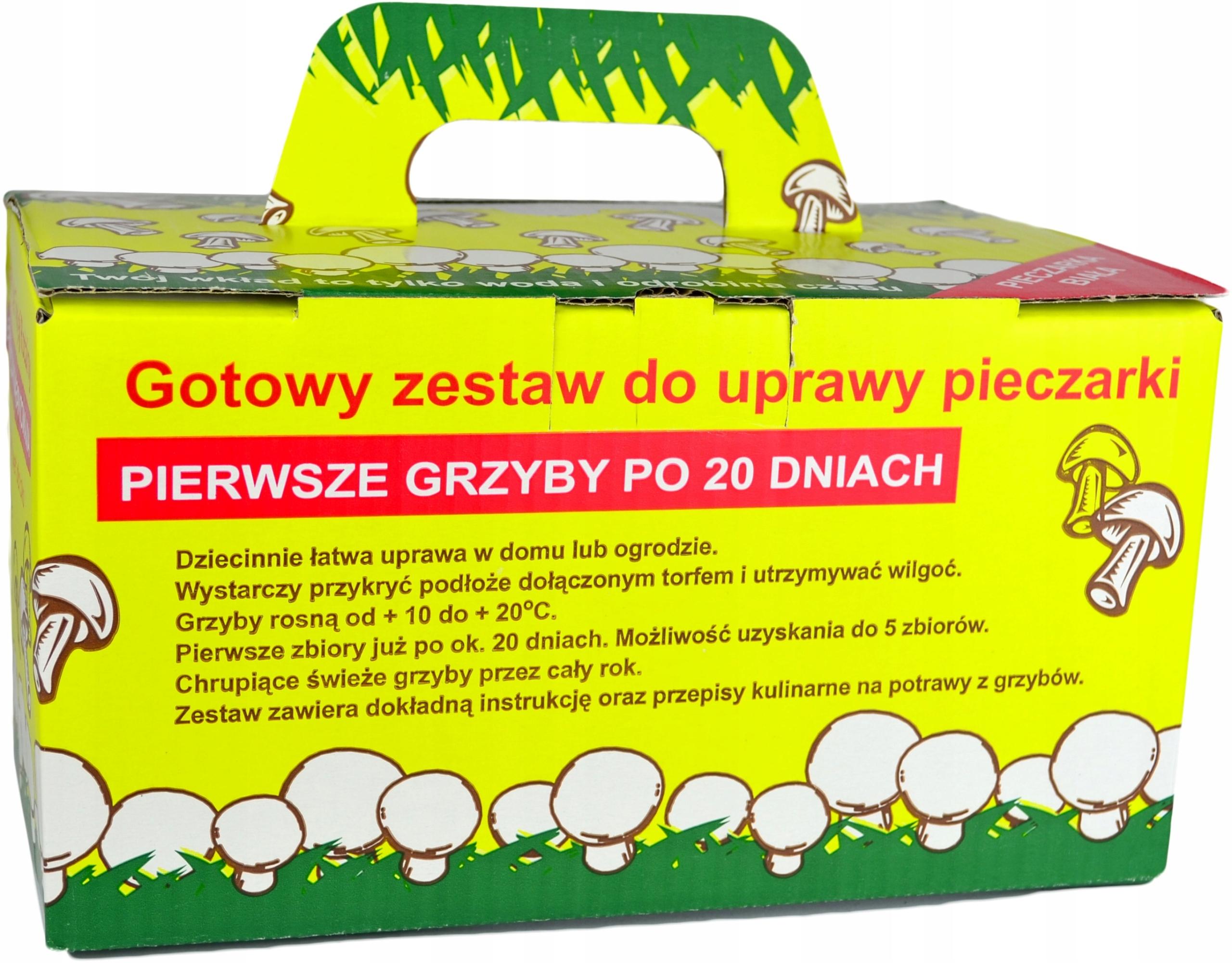 Грибы в домике садового гриб белый мицелий