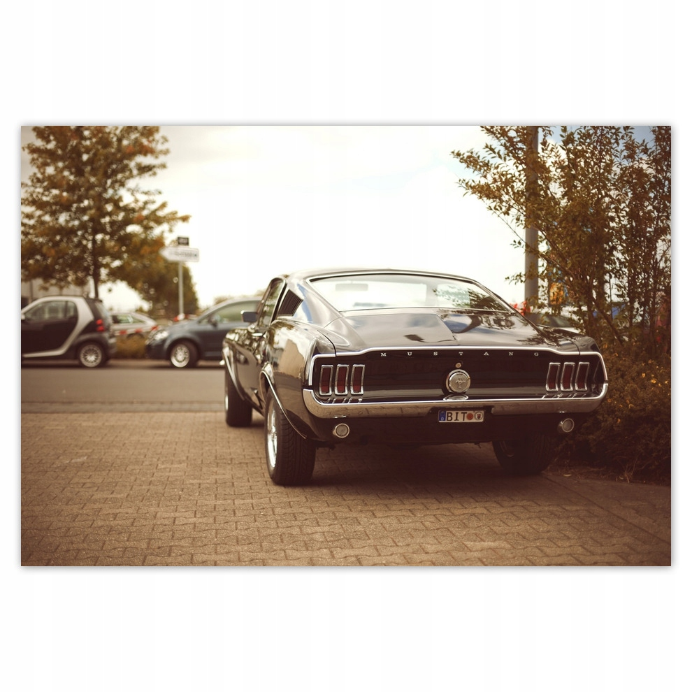 Plagáty 200x135 Vintage photo Ford Mustang