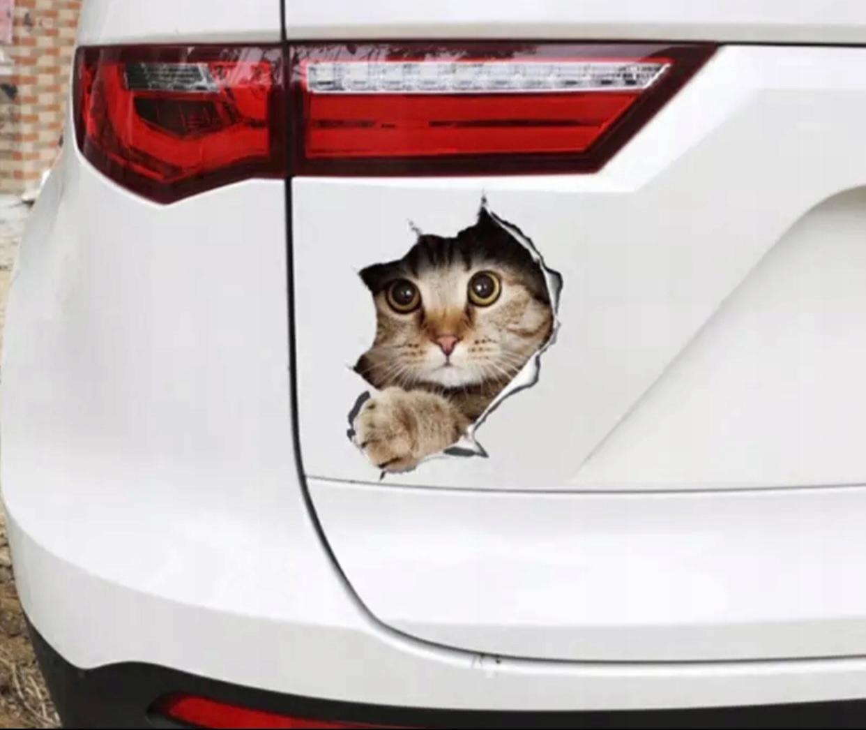 Naklejka 3D kot z dziurą dziura na samochód ściane Długość 17 cm