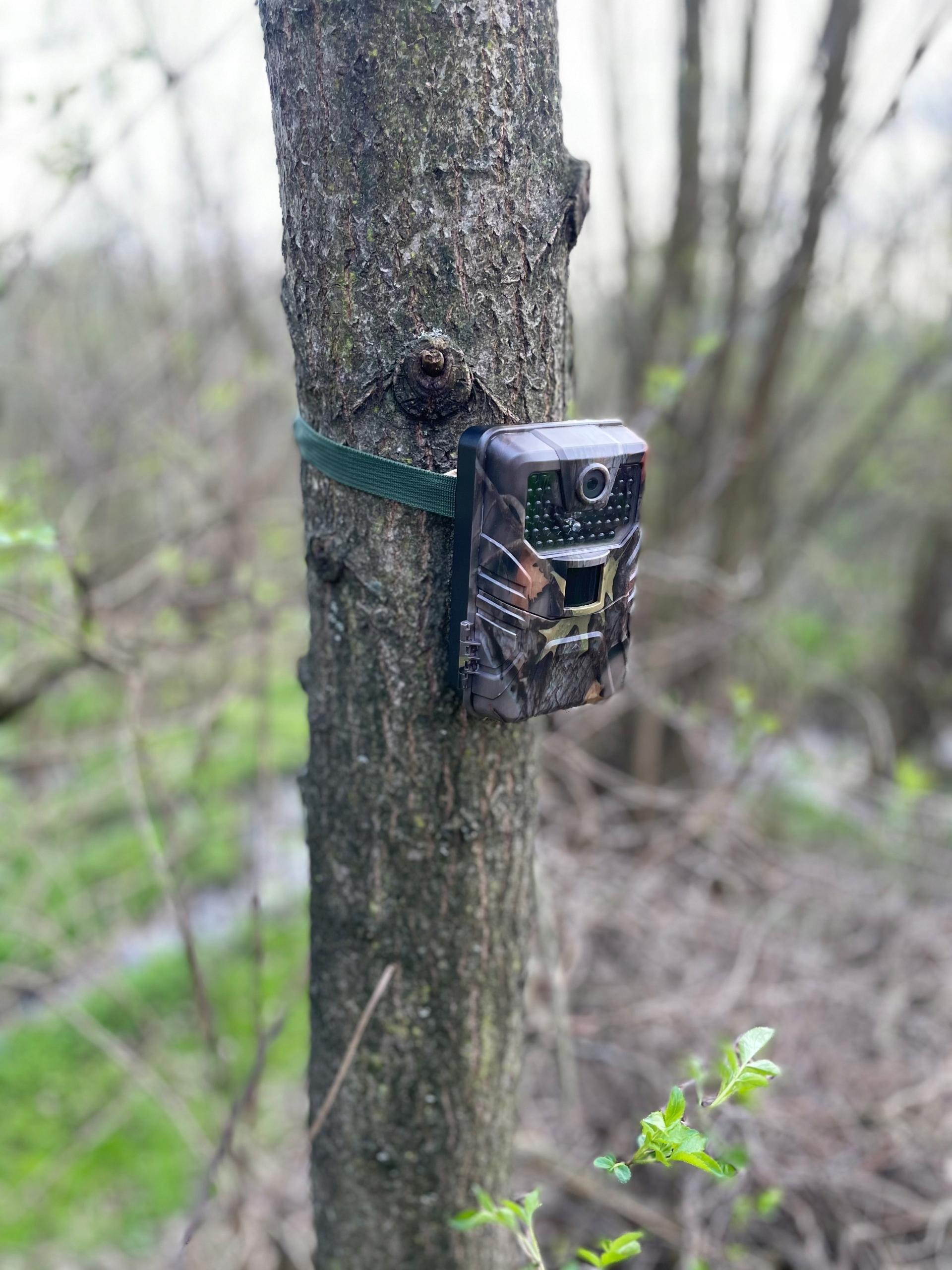 Kamera Leśna TOPHUNT FOTOPUŁAPKA 2.7K POLSKI 44xIR Prędkość wyzwalania 0.3 s