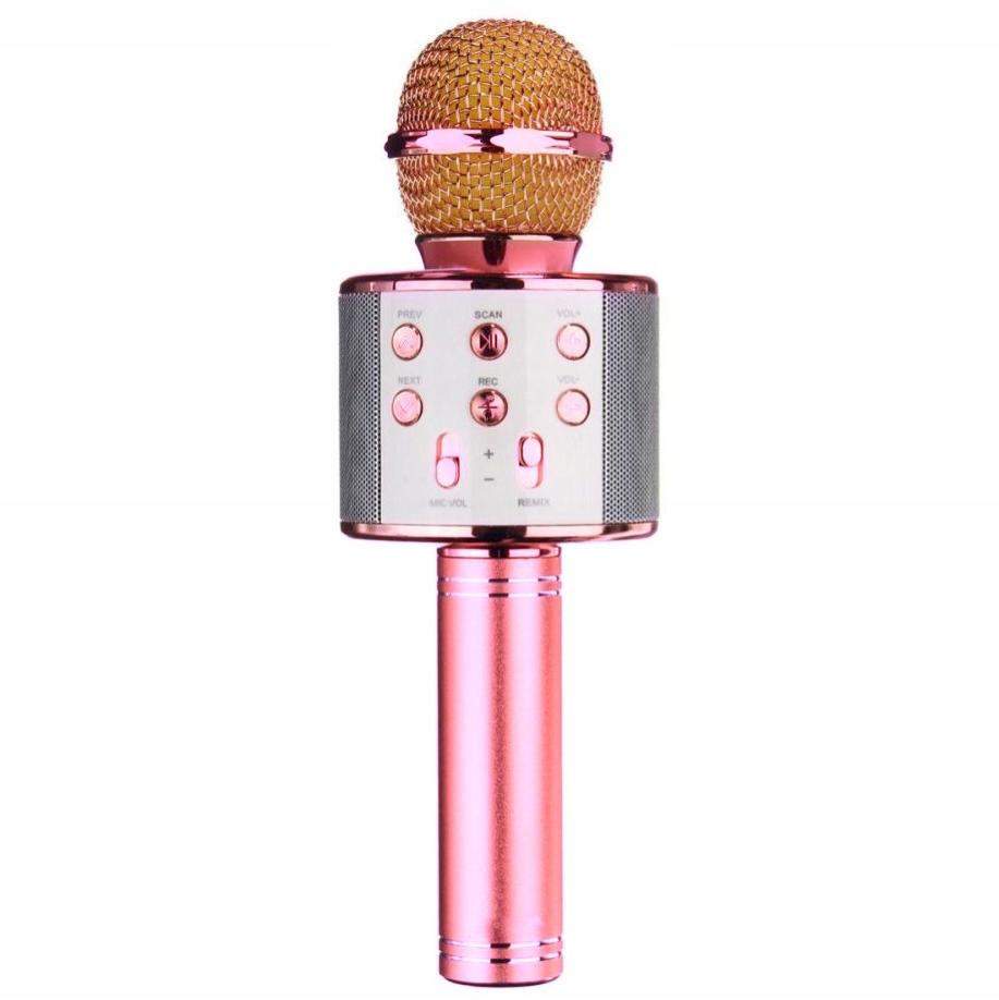 Item MICROPHONE KARAOKE WIRELESS BLUETOOTH SPEAKER 1