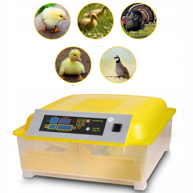 Автоматический инкубатор для 48 яиц Hatcher Hatcher