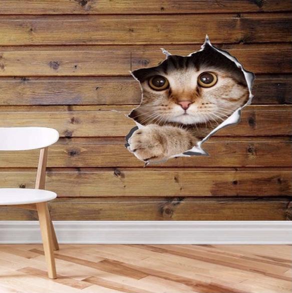 Naklejka 3D kot z dziurą dziura na samochód ściane Motyw Inny