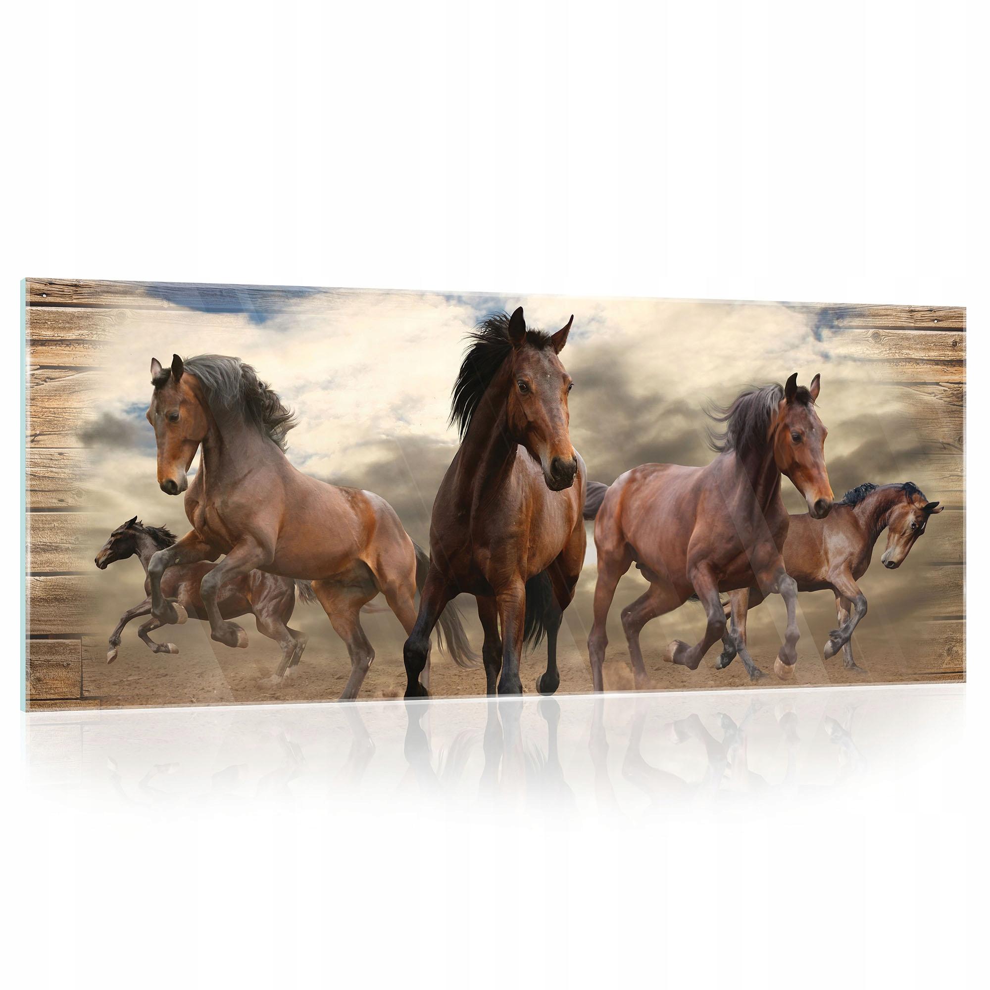 Maľba na sklo na skle ZVIERATÁ Kone 125x50